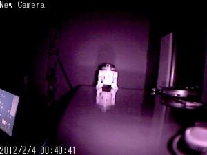 DC-NCR13Uで赤外線モード撮影